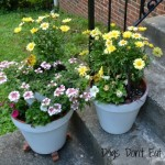 painted-planters - spring-projects-one-day - Leviton Blog