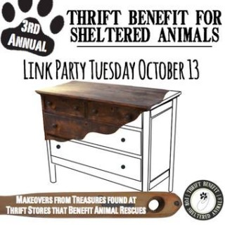I'm again participating in the Thrift Benefit for Sheltered Animals - see what project I'm taking on this time! dogsdonteatpizza.com