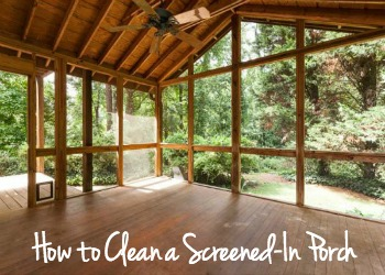 How to Clean a Screened-In Porch - dogsdonteatpizza.com
