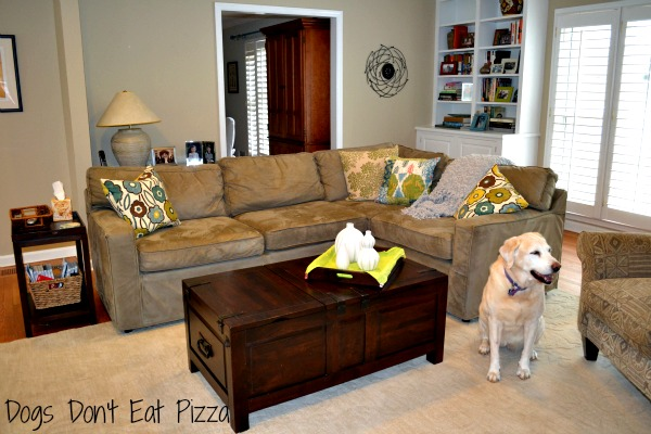 Living Room in green and blue - Dogs Don't Eat Pizza