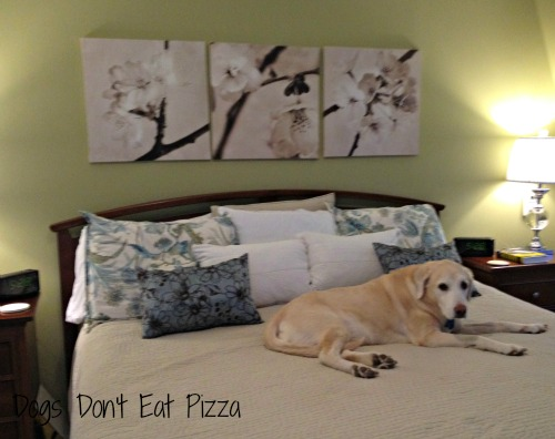 master bedroom - Dogs Don't Eat Pizza