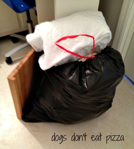 pile of donations - Dogs Don't Eat Pizza