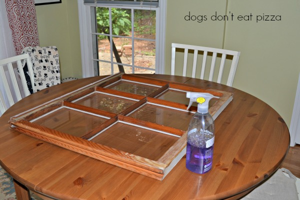 first clean the window - five uses for old windows - Dogs Don't Eat Pizza