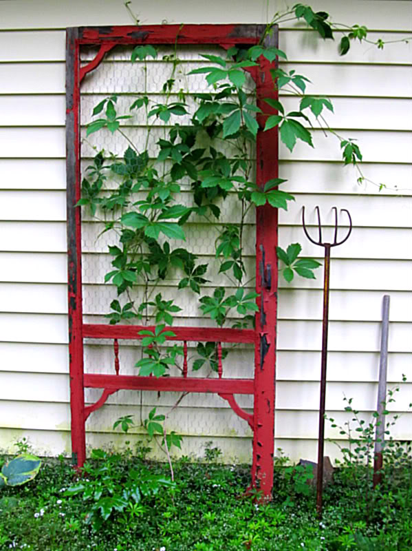 screen-door-as-trellis - upcycled-door
