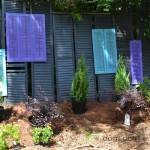 Turn Old Shutters Into a Privacy Screen