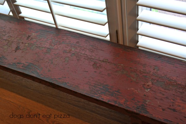 vintage bench up close - Dogs Don't Eat Pizza