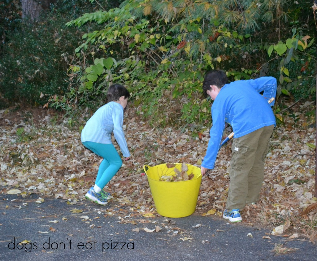 leaf collecting - Dogs Don't Eat Pizza