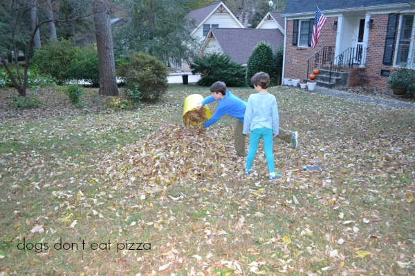 making leaf pile - Dogs Don't Eat Pizza