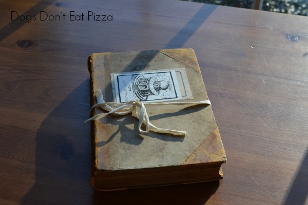 1873 book - Dogs Don't Eat Pizza