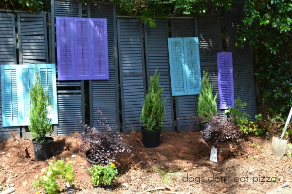 Turn old shutters (or louvered doors) into a privacy screen - Earth Day projects - thediybungalow.com