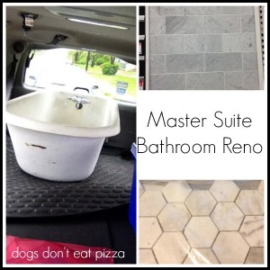 bathroom-renovation-master-suite - Dogs Don't Eat Pizza