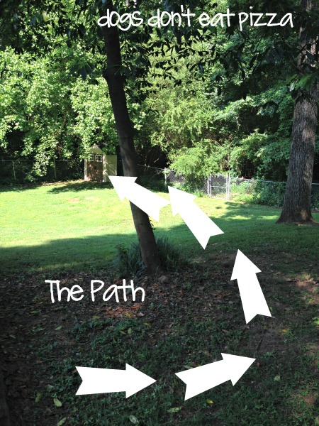 path-of-shed-from-patio-to-yard - Dogs-Don't-Eat-Pizza