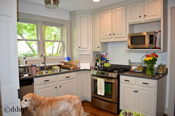 kitchen before with cabinets - Dogs Don't Eat Pizza