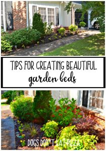 Are weeds overtaking your garden? Here are my top tips for creating beautiful garden beds - thediybungalow.com