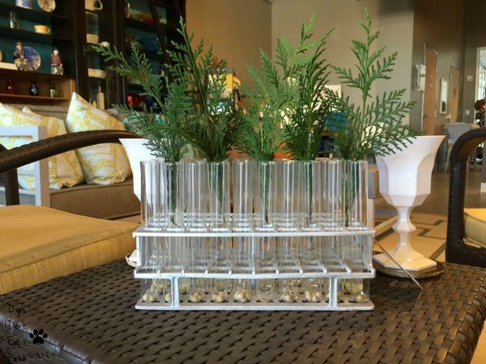 Test tubes as vases when creating a bar - thediybungalow.com