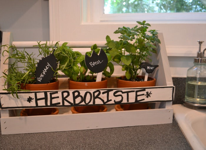 farmhouse style herb garden in the kitchen - Dogs Don't Eat Pizza