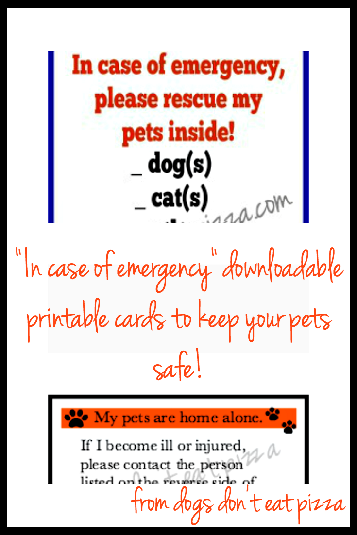 Visit thediybungalow.com for downloadable printable cards in case of emergency to keep your pets safe!