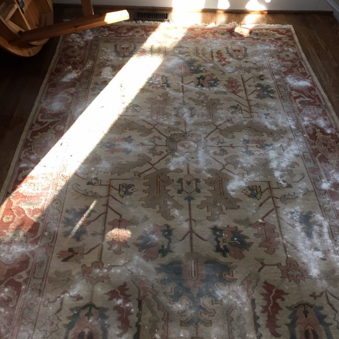 My tips for cleaning and deodorizing a rug without harmful chemicals - TheDIYBungalow.com