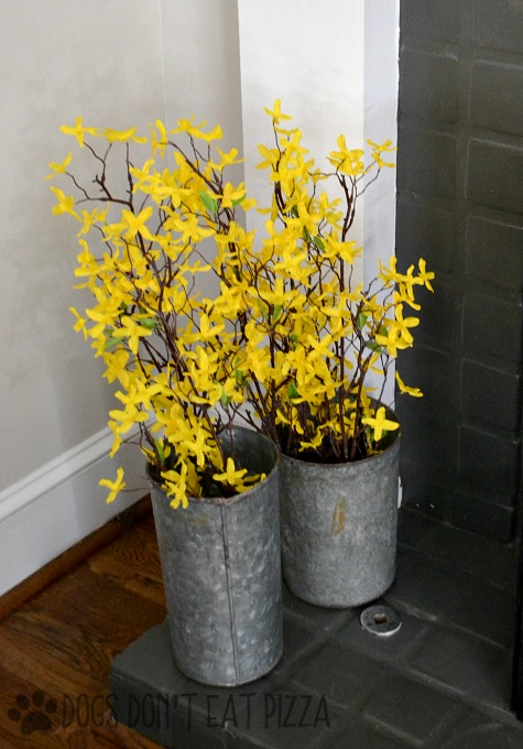 Galvanized pails with forsythia - spring decorating - thediybungalow.com