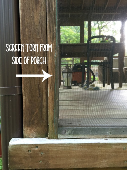 Inspect the screens before starting how to fix a screened porch - thediybungalow.com