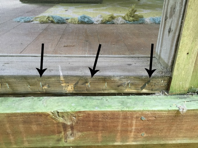 Staple the screen back to the frame when fixing a screened porch - thediybungalow.com