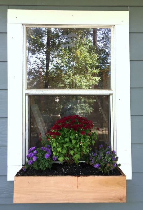 DIY Flower Boxes - Power Tool Challenge - thediybungalow.com