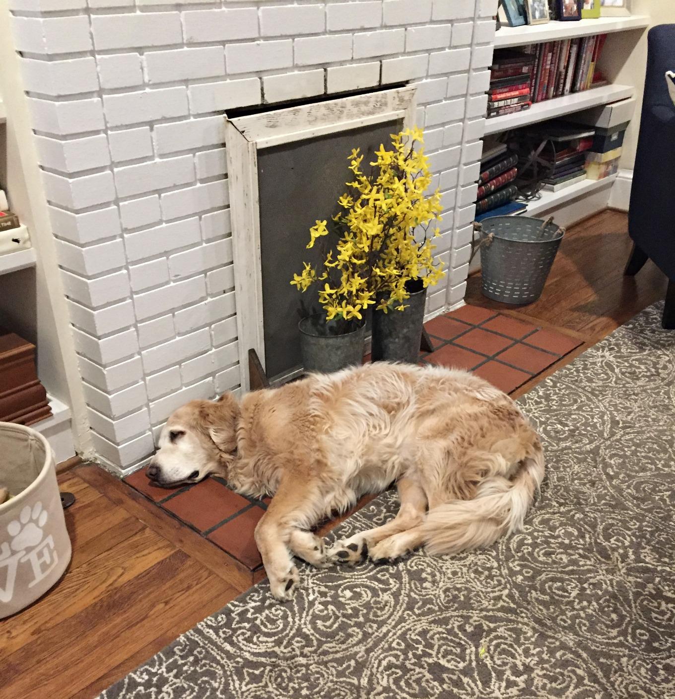 Hank Dog likes the fireplace makeover - thediybungalow.com